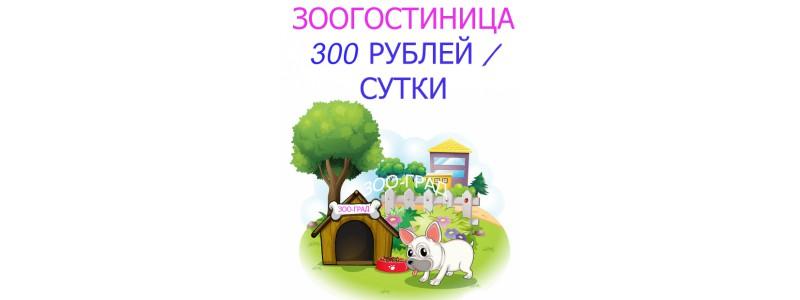зоогостиница