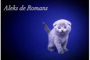 Aleks de Romans